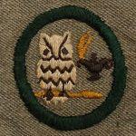 1928-38 Scholarship