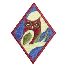 cadettenightowlbadge